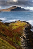 The last of the Autumn colours. (lawrencecornell25) Tags: landscape waterscape braes bentianavaig scenery scotland skye isleofskye mountain nature outdoors nikond5