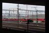 Window to the Forest (markus_kaeppeli) Tags: eisenbahn kran zug train crane railway frame rahmen mast hardbruecke