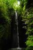 _DSC4514 (UdeshiG) Tags: bali indonesia asia waterfalls uluwatu seminyak tanahlot nikon ubud kuta paddy dogs balidogs travel traveltheworld