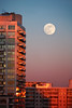 January Blue Moonrise at Sunset (Katrin Ray) Tags: januarybluemoonriseatsunset januarybluemoon bluemoon moon 2018 january fullmoon winter sunset moonrise evening sky blue pink goldcoloured reflections skyscraper toronto ontario canada katrinray dreamscapesoftoronto canonphotography canon eos rebel t6i 750d supermoon