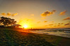 Sunset, February 4th, 2018 (M Esposo) Tags: sunset sky beach sea ocean sand silhouette landscape water tree orange hue afternoon surfing sanjuan sony philippines