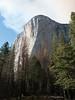 Yosemite (Travis Estell) Tags: california elcapitan nationalpark yosemite yosemitenationalpark unitedstates us