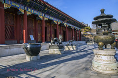 Chine, Palais d'été à Pékin (louis.labbez) Tags: chine ville china town labbez asie asia 2017 pékin beijing été summer palais palace empereur rouge red pourpre ming qing statue sculpture