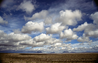 Arizona Landscape - TBT