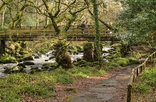 The River Plym, Shaugh Bridge, Dartmoor