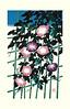 Japanese morning glory (Japanese Flower and Bird Art) Tags: flower morning glory ipomoea nil convolvulaceae masayuki miyata modern lithograph print japan japanese art readercollection