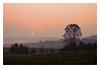 Sunrise I (Rolf Pahnhenrich) Tags: canoneos400ddigital landschaft sonne sonnenaufgang baum morgenstimmung sunrise