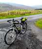 170927370 (Xeraphin) Tags: scotland clydemuirshiel dawes discovery sport butterfly 6061 series2 cycle bike bicycle