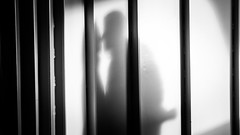 The Kiss (DerHarlekin) Tags: shadow schatten kuss schemenhaft silhouette kontrast ship schiff fähre ferry meersburg konstanz bodensee badenwürttemberg germany europe europa deutschland romantic love liebe frühlingsgefühle spring feelings passion blackandwhite bw schwarzweis lines abstract