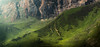 Shahdag (Isr Obvius) Tags: azerbaijan azerbaycan adventure amazing nature landscape landscapes panorama panoramic wallpaper dark park green gusar travel tree trees mountains mount mountain morning summer climbing hiking hills hill hd holiday shadow shadows sunshine sunlights silence nikon nikkor