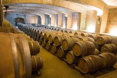 Wine cellar (exfordy) Tags: vin