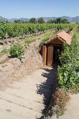 Soil analysis test pit (exfordy) Tags: vin