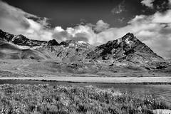 Cima Gaviola (Guido Colombini) Tags: pontedilegno bw bianconero alps eriophorum mountains eriofori valcamonica nuvole passogavia montagna clouds