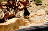 Mountain Stream (matlacha) Tags: mountains rock water streams colour nature landscape vacation travel morocco