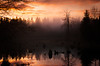 Hot Sunset on a Cool Evening (Brian Xavier) Tags: redmond washingtonoutdoors washingtonstate beautiful bog cloud cold fog foggyforest hot lake lakes mist mistyforest northwestisbest optoutside orange orangeclouds orangesky pacificnorthwest pond reflections reflectionsinwater silhouettes sky spooky stumps sunset sunsets swanlake trees water winter tree wood landscape branches fiyah