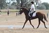 krista2 (allymadesomething) Tags: krista horse show horses ponies parrish oaks farm barn simba thoroughbred
