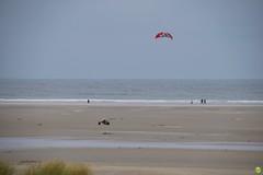 Wind power (petrOlly) Tags: europa europe germany deutschland borkum island ostfriesland eastfrisia northsea nordsee nature natura przyroda water sea