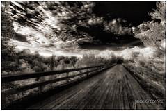The Abandoned Train Bridge (Jason OC) Tags: jasonoconnell blackandwhite bw bridge infrared canon5dmkii 14mm ultrawideangle samyang14mm quebec trois riivieres