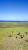 20171206_120748 (taver) Tags: chile rapanui easterisland isladepasqua summer samsunggalaxys6 dec2017 06122017 ranoraraku quary