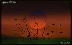 Albero con sole ed uccelli - Febbraio-2018 (agostinodascoli) Tags: albero uccelli nikon nikkor texture nature sole cielo verde rosso agostinodascoli photoshop photopainting art digitaart digitalpainting sunseit paesaggi landscape tramonto