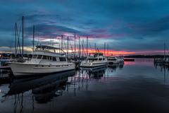 DSC_8245 (carpe|noctem) Tags: panama city beach marina florida sunset