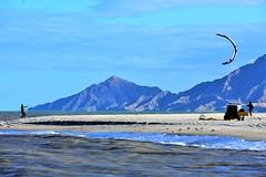 Windy day (thomasgorman1) Tags: kite surfing surfer kitesurfing outdoors sports recreation nikon baja mexico sea beach ocean seagulls vehicle mountains windy sky