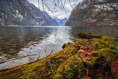 Berchtesgadener Land (einhundertstel.eu) Tags: berchtesgaden lake königssee outdoor landscape nature mountain
