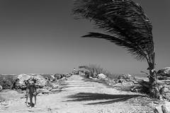 Boca de Ceniza (fernando_torres_go) Tags: canon 1000d 1855mm paisaje landscape bw bn barranquilla colombia mar
