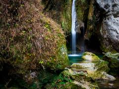 Nacedero del Urederra (pedrohias) Tags: woods waterfall nacedero del urederra río navarra paisaje naturaleza nature landscape river spain cascada bosque