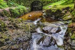 Under The Bridge (robinta) Tags: stream river water falls longexposure waterfall landscape woods woodland scotland argyll dunoon pucksglen rocks pentax sigma sigma1770 ks1 pentaxart ngc colour colors