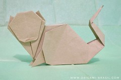 13/365 Cat number 12 by Klaus-Dieter Ennen (origami_artist_diego) Tags: origami origamichallenge cat 365days 365origamichallenge paperfolding dobradura papiroflexia
