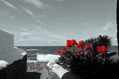 Praia dos Moinhos (asitrac) Tags: asitrac architecture açores flower house plant portugal sãomiguelisland flowers sunshine weather travel europe azores moinhos pt 15challengeswinner