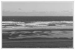 20180211_125932_0003 (Olivier_1954) Tags: vacances france balade concepts motsclésgénériques nb paysagesmarins voyages wissant mer paysage visite hautsdefrance fr