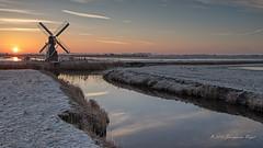 De kemphaan Texel (Jos van der Wijst) Tags: 2018 texel weidemolen dekemphaan dewaal