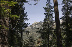 Twin Lakes Trail (rschnaible (Not posting but enjoying your posts)) Tags: sequoia national park us usa west western sierra nevada mountains california landscape outdoor hike hiking