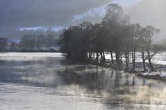 Misty Light (magaroonie) Tags: rivertummel trees mist sunlight pitlochry 7daysofshooting week29 serene focusfriday