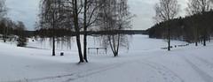 Norra sidan av Stora Delsjön i Göteborg 2018 (biketommy999) Tags: göteborg sverige sweden 2018 vinter biketommy biketommy999 sjö lake panorama