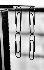 Magnetismo insospechado (patosincharco) Tags: iman magnetismo