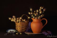 Still life with dried Nigella Love in the Mist flowers. (Phyllis Freels) Tags: phyllisfreels basket brown driedflowers flowershears indoor pitcher purple stilllife tabletop terracotta nigella