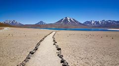 20171126_113244 (taver) Tags: chile andes atacama nov2017 26112017 summer samsunggalaxys6 highaltitude laguna lagunamiscanti altiplano