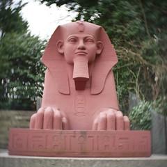 Pink Sphinx (Antony J  Shepherd) Tags: sphinx crystalpalace lumixg7 cmount cctvlens 25mm f14