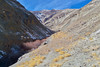 Tarbung Valley (Vinchel) Tags: india jammu kashmir ladakh hemis tarbung valley outdoor nature landscape travel sky mountain snow light l16