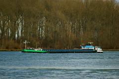 MS TOKETI (Lutz Blohm) Tags: mstoketi schüttgutfrachter speyer gütermotorschiff binnenschifffahrt binnenschiffe rhein rheinschifffahrt fluskilometer399 sonyalpha7aii fe70300goss