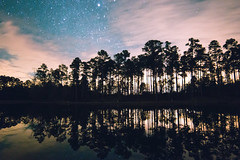 Night on the lake (rowe_rosemary) Tags: nightphotography nightsky nightscape nature desotonationalforest forest lake longexposure lowlight stars stargazing starrynight outdoors mississippi travel nationalforest