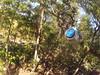 G0121269 (harleyhurricane1) Tags: line zip zipline ziplinepark dadecityflorida treehoppers centralflorida largestziplineparkincentralfl dadecity