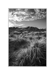 East Head. (John Dominick) Tags: east head chichester harbour west sussex sand dunes grass national trust