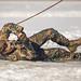 Štāba bataljona karavīru izdzīvošanas mācības