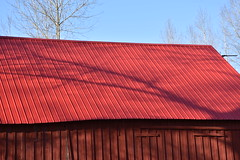 DS7_7861 (johnmoffatt2000) Tags: red roof barn metal wood paint color sun 425