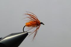 Orange spider (Steenjep) Tags: flue fly fishing flyfishing angling wetfly vådflue orangespider spider