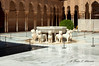 Patio de los Leones (plaizana) Tags: alhambradegranada patio de los leones